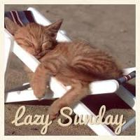 Lazy Sunday 2