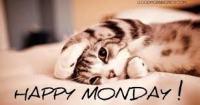 Monday 4