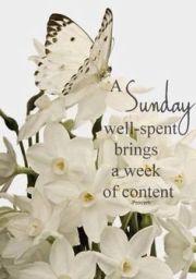 Sunday 1
