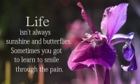 Life-Isn_t-Always-Sunshine-And-Butterflies-Sometimes-You-Got-To-Learn-To-Smile-Through-The-Pain
