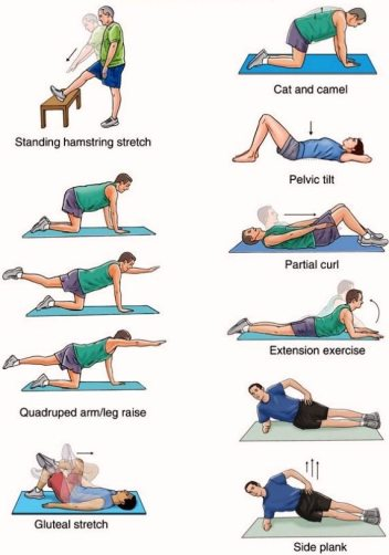 lower-back-strengthening-exercises