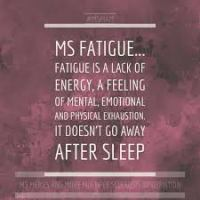 MS Fatigue 2