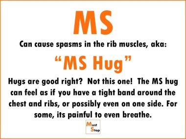 MS Hug