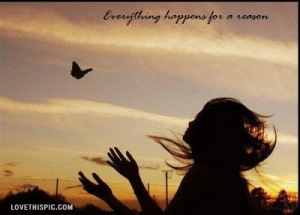 11324-Everything-Happens-For-A-Reason..