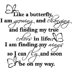 butterfly who am I