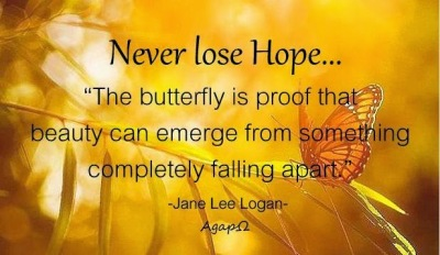 Butterfly Hope Quote