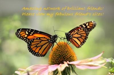 2-butterflies-480-px
