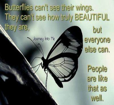 butterflies-cant-see-their-wings