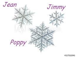 3 snowflakes with names
