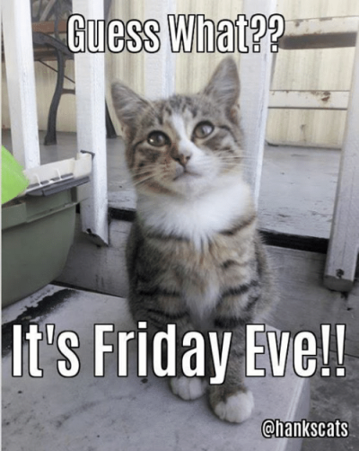 uess-what-its-friday-eve-chankscats-happy-friday-eve-guys-17457852.png