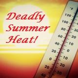 deadly summer heat