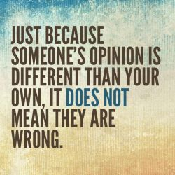 Just-because-someones-opinion-is-different-than-your-own-it-does-not-mean-they-are-wrong.