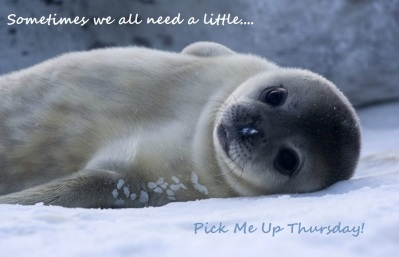 Pick me up thursday seal