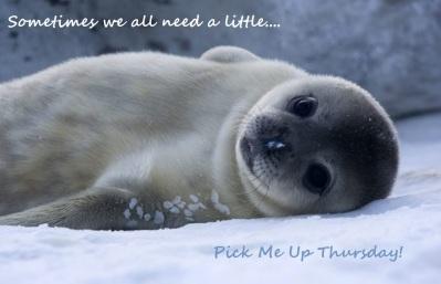 Pick me up thursday seal