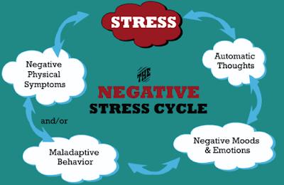 Negative Stress Cycle