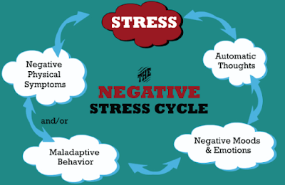 Negative Stress Cycle