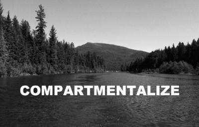 compartmentalize-repost-alexinstinctnyc-someinspirationalbullshit-2362242