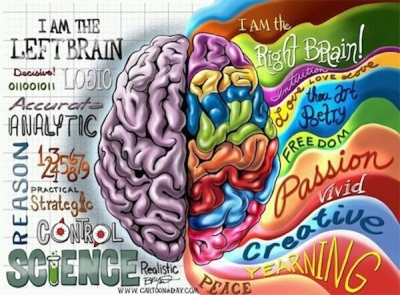 Left-Brain-vs-Right-Brain