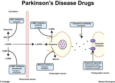 parkinson disease drugs - moises dominguez - updated