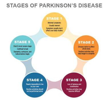 parkinsonstages2-01-1