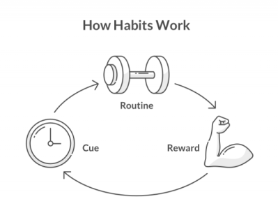 how-habits-work-e1527142989402